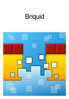 Briquid Box Art
