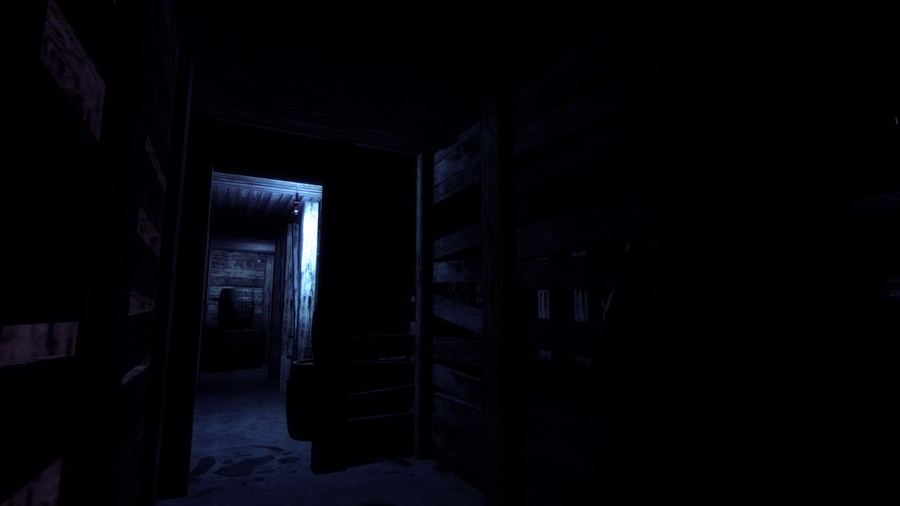 Slender: The Arrival Screenshot #8