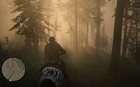 Red Dead Redemption 2 PS4 Screenshot
